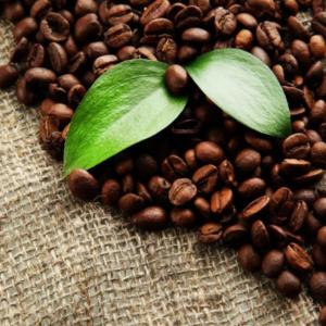 café en grains_2
